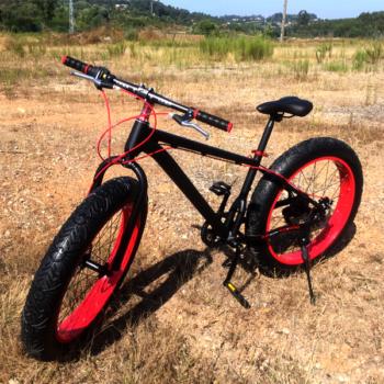 Bicicleta Urb Warrior Fat Tyre